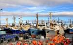 На Сахалине моряков вынудили прекратитьзабастовку