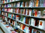 В Тюменской области книжный магазин привлекли к суду за продажу «Конька-Горбунка»