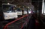 Волгоградские перевозчики анонсировали массовые увольнениясотрудников