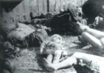 Страшные документы о зверствах ОУН-УПА (строго18+)