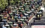 Фермеры Парагвая провели массовыезабастовки